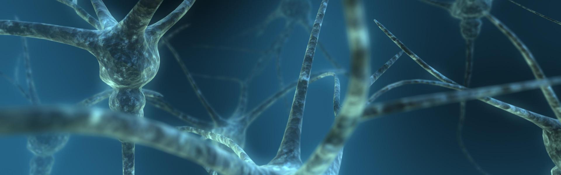 Neuron-1-Cropped-e1382492339555
